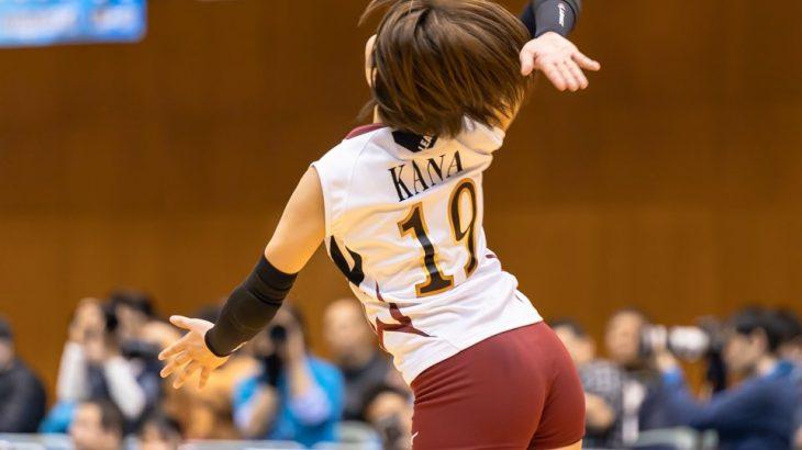 【画像】女子バレー選手の尻