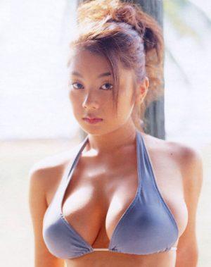 【画像】小池栄子の胸vs根本はるみの胸