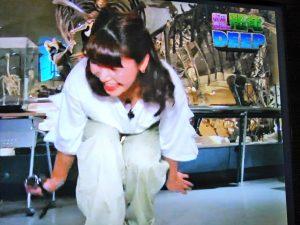 【画像】声優の新田恵海さん、番組で豪快に「谷間チラリ」してしまうззззззззззззз