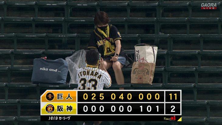 【悲報】阪神ファンのカップルさん、聖地・甲子園でパンチラ撮影