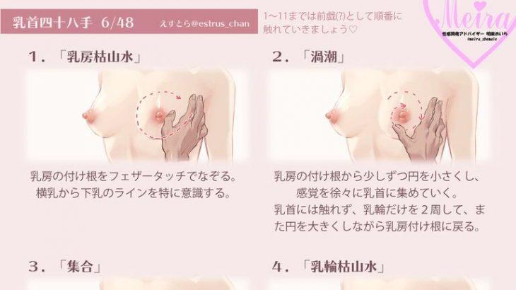 【画像】乳首オナニー、種類がありすぎる